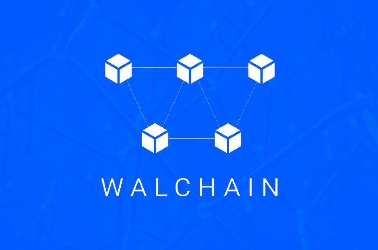 Walchain logo